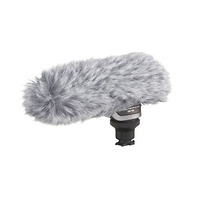 Canon DM-100 Directional Stereo Microphone 2591B002